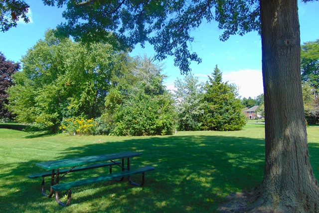 Highview Park Picnic Table