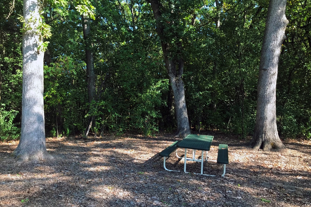 Acorn Acres Park Picnic Table