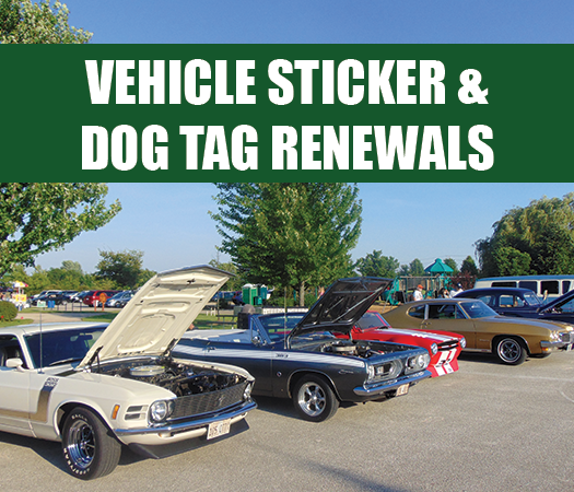 Vehicle sticker and dog tag renewal