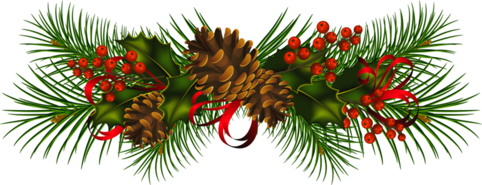 Transparent_Christmas_Pine_Cones_PNG_Clipart.png
